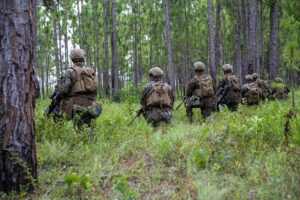 Marines in Forest