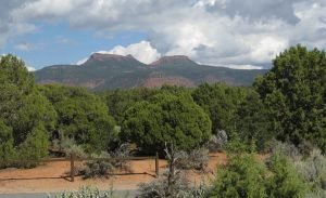 A photo of the Bears Ears buttes in San Juan County, Utah.