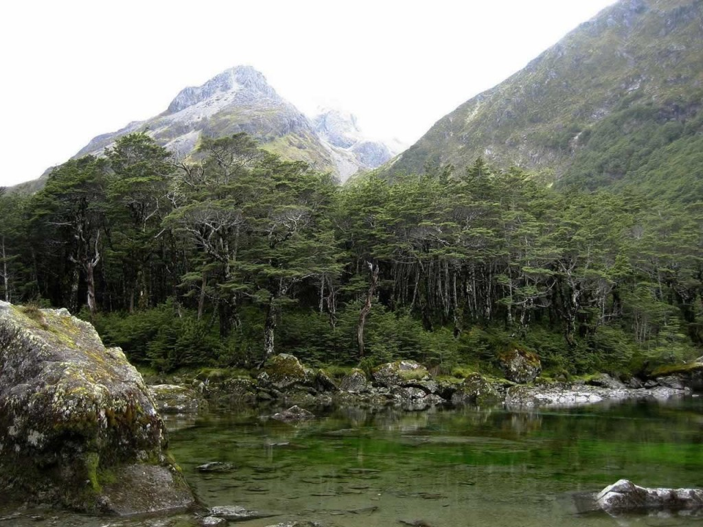 Blue Lake is a small lake in Nelson Lakes National Park, in the northern reaches of New Zealand's Southern Alps. (Wikimedia/Mergy)