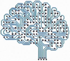 Brain Circuit - 400