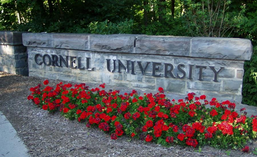 Cornell university dissertation
