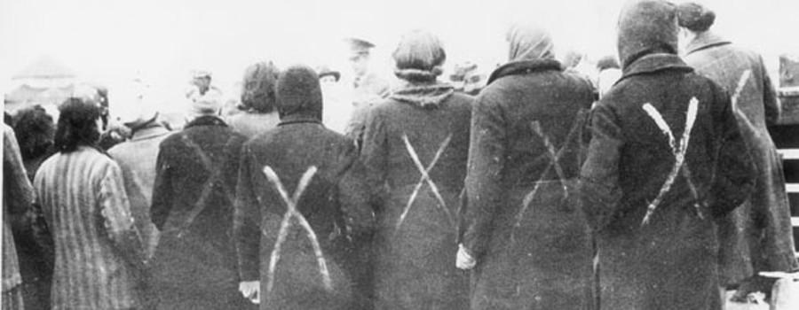 Corrie Ten Boom Survivors Ravensbrück Camp WWII - 900