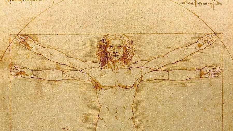 Da Vinci Vitruvian Man - 900