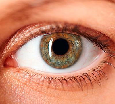 Eye Close Up - 400
