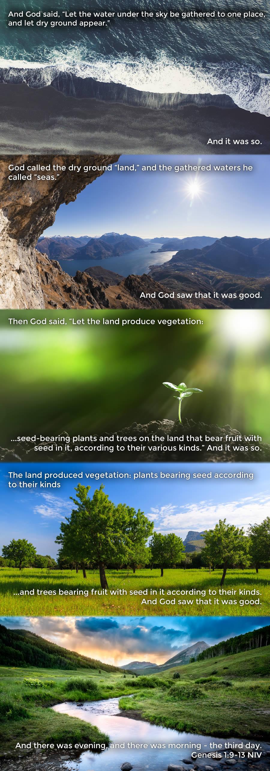 Genesis 1.9-13