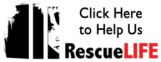 Help Us RescueLife