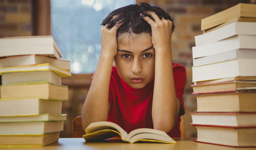 Homework Stressed Boy - 900