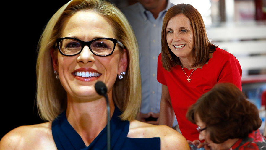 Kyrsten Sinema Defeats Martha Mcsally in Arizona Senate Race | The