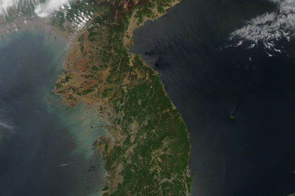North and South Korea Deforestation - 600