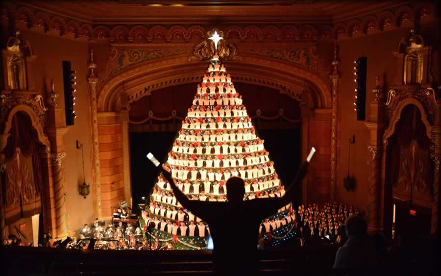 Five Stories Tall: Michigan Students Show Christmas Trees