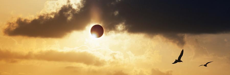 Solar Eclipse Cloud Sunset Birds Banner - 900