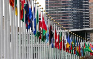 NEW YORK, UNITED STATES - NOVEMBER 24: Country flags are seen in front of the United Nations Headquarters in New York, United States on November 24, 2015. (Photo by Cem Ozdel/Anadolu Agency/Getty Images)