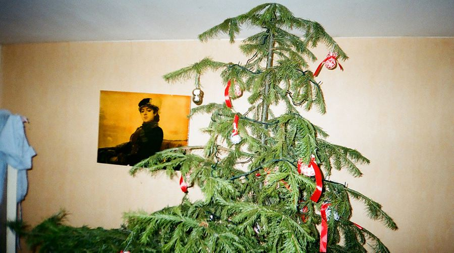 ugly christmas tree 900 flickrtania tataata - Ugly Christmas Trees