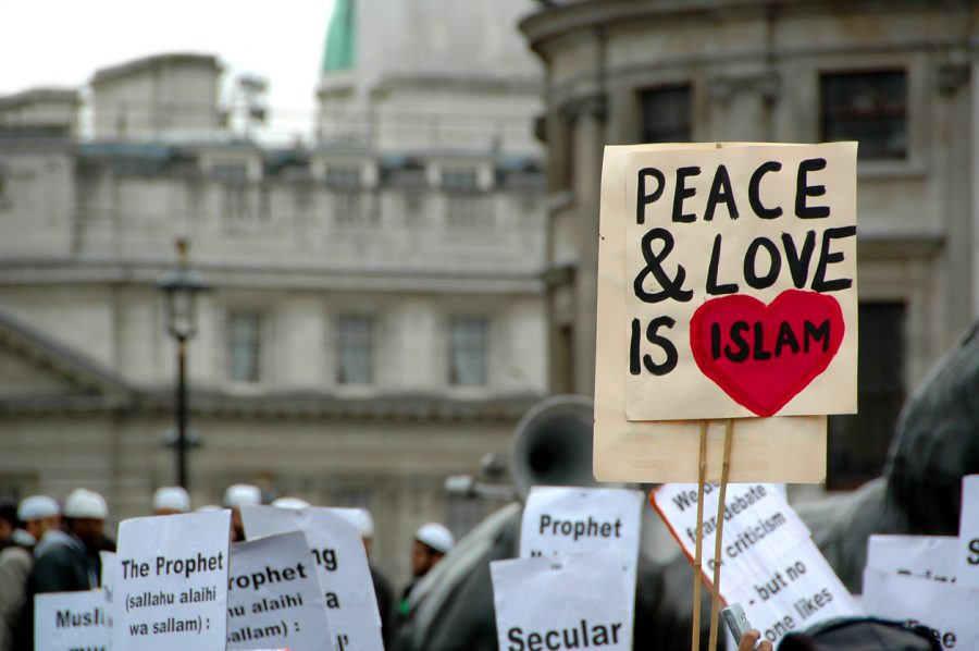Are Western Apologists for Islam Today's 'Useful Idiots