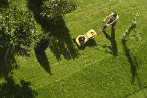 Spring and Spiritual Lawnmowers