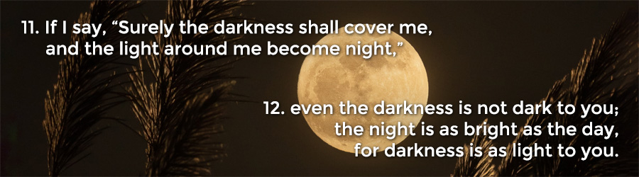 "11 If I say, ""Surely the darkness shall cover me, and the light around me become night,"" 12 even the darkness is not dark to you; the night is as bright as the day, for darkness is as light to you."