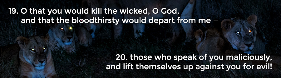 19 O that you would kill the wicked, O God, and that the bloodthirsty would depart from me — 20 those who speak of you maliciously, and lift themselves up against you for evil!