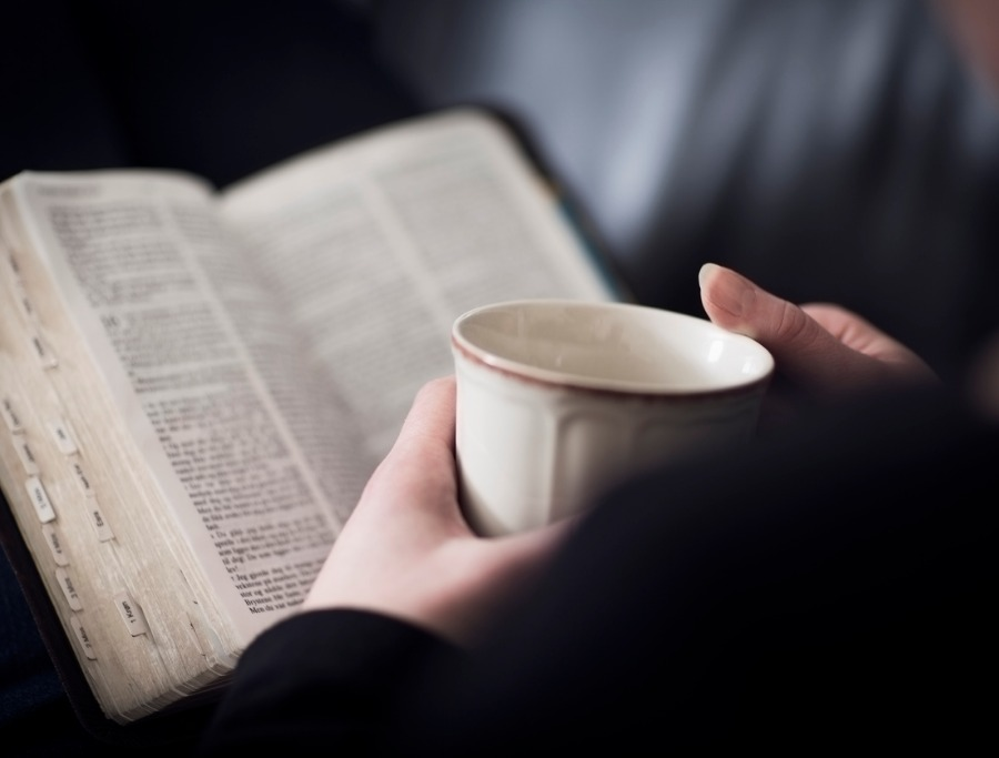 Charles Spurgeon on Reading the Bible | The Stream